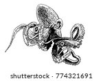 graphical octopus isolated on... | Shutterstock .eps vector #774321691