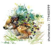 fawn. forest animals watercolor ...   Shutterstock . vector #774400999