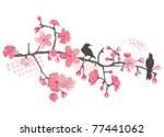 cherry tree with flower and... | Shutterstock .eps vector #77441062