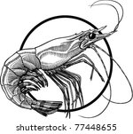 animal,black,engraving,fish,food,illustration,isolated,object,prawns,raw,seafood,shellfish,shrimp,tasty,vector