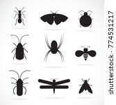 vector of insects group on... | Shutterstock .eps vector #774531217