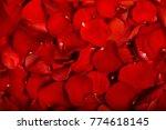 volumetric red rose petals as... | Shutterstock . vector #774618145