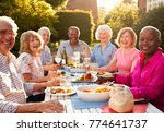 portrait of senior friends... | Shutterstock . vector #774641737