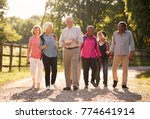 group of senior friends hiking... | Shutterstock . vector #774641914