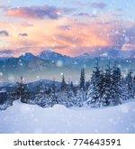 beautiful winter alpine...   Shutterstock . vector #774643591
