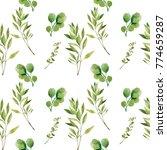watercolor seamless pattern.... | Shutterstock . vector #774659287