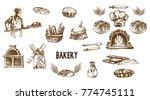 digital vector detailed line...   Shutterstock .eps vector #774745111
