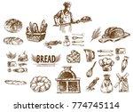 digital vector detailed line... | Shutterstock .eps vector #774745114