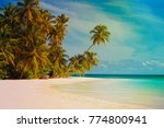 tropical sand beach with palm...   Shutterstock . vector #774800941