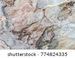 abstract textures surface... | Shutterstock . vector #774824335