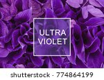 trendy color concept. set with... | Shutterstock . vector #774864199