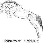 joose jumping of horse. | Shutterstock .eps vector #775040119