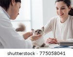 veterinarian visiting a... | Shutterstock . vector #775058041