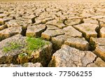 cracked earth with grass  ... | Shutterstock . vector #77506255