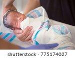 newborn infant baby getting his ... | Shutterstock . vector #775174027