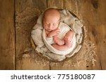 newborn baby sleeping | Shutterstock . vector #775180087