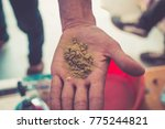 hand holding some hashish  or... | Shutterstock . vector #775244821