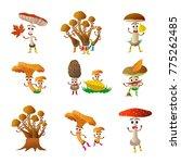 funny mushroom porcini