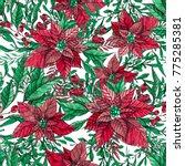 winter plant poinsettia flower... | Shutterstock . vector #775285381