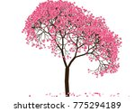 vector illustration of an...   Shutterstock .eps vector #775294189