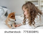 Stock photo small female kid has long curly hair plays with her favourite dog on bed being glad to spend time 775303891