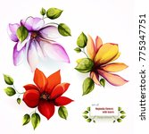 flowers. floral collection. set ...   Shutterstock .eps vector #775347751
