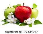 Red Apple In Front Of Two Gree...