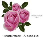 realistic of pink rose.love ... | Shutterstock .eps vector #775356115