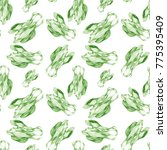 cabbage chinese pencil isolated ... | Shutterstock . vector #775395409