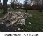 dirty snow on the green grass   Shutterstock . vector #775419835