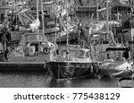 italy  sicily  mediterranean... | Shutterstock . vector #775438129