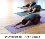 women practicing yoga together... | Shutterstock . vector #775465015