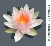 pink lotus flower geometric... | Shutterstock .eps vector #775498375