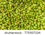 from above green freshly...   Shutterstock . vector #775507234