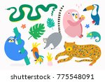 hand drawn various jungle... | Shutterstock .eps vector #775548091