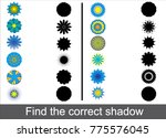 find the correct shadow of... | Shutterstock .eps vector #775576045