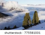 view of alps at mayrhofen ski... | Shutterstock . vector #775581031