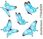 beautiful blue butterflies ... | Shutterstock .eps vector #775628509