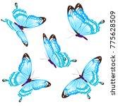 beautiful blue butterflies ... | Shutterstock .eps vector #775628509