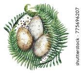 three watercolor dinosaur eggs... | Shutterstock . vector #775696207