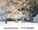 snow covered bench in the... | Shutterstock . vector #775728484