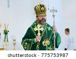 sviatoslav shevchuk  the major... | Shutterstock . vector #775753987