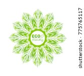 eco friendly logo with green... | Shutterstock .eps vector #775765117