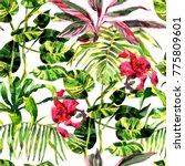 tropical background. watercolor ... | Shutterstock . vector #775809601