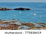 isla isabel  mexico | Shutterstock . vector #775838419