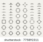 a huge rosette wicker border... | Shutterstock . vector #775892311