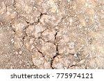 cracked ground soil texture | Shutterstock . vector #775974121