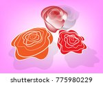 three red rose flower with pink ... | Shutterstock .eps vector #775980229
