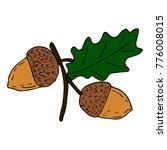 acorn vector illustration   Shutterstock .eps vector #776008015