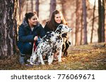 Stock photo dog walkers with dalmatian dogs enjoying in park 776069671